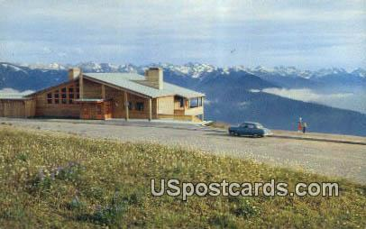 Lodge - Hurricane Ridge, Washington WA Postcard