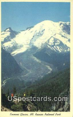 Emmons Glacier & Mountain, Sourdough Trail - Mt. Rainier National Park, Washington WA Postcard