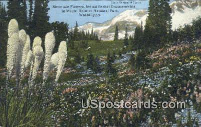 Mountain Flowers - Mt. Rainier National Park, Washington WA Postcard