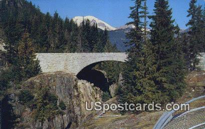 Box Canyon Bridge - Mt Rainier, Washington WA Postcard