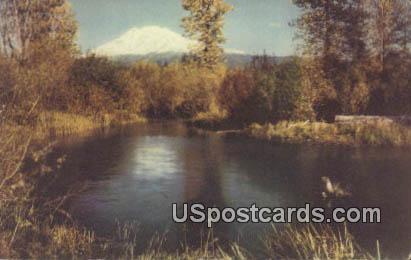 Mount Adams, Washington Postcard     ;      Mount Adams, WA