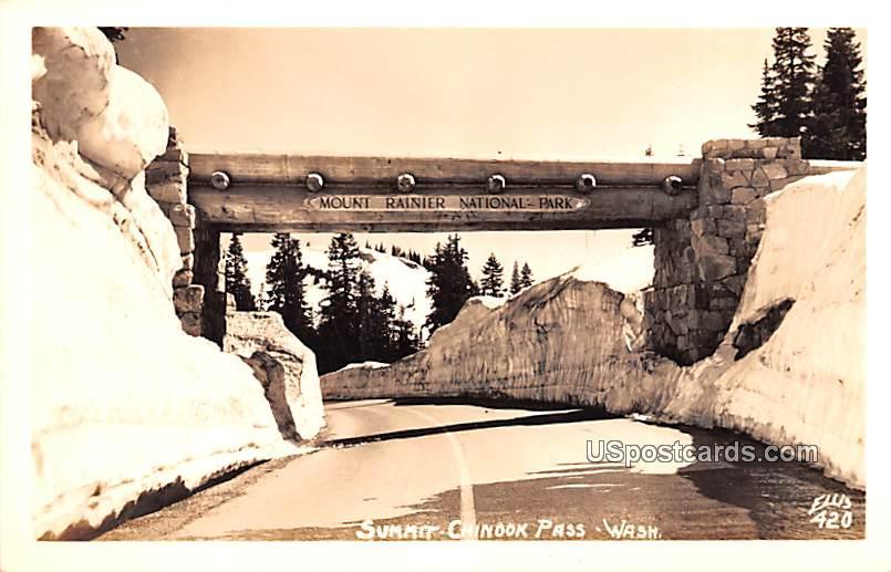 Summit Chinook Pass - Rainier National Park, Washington WA Postcard