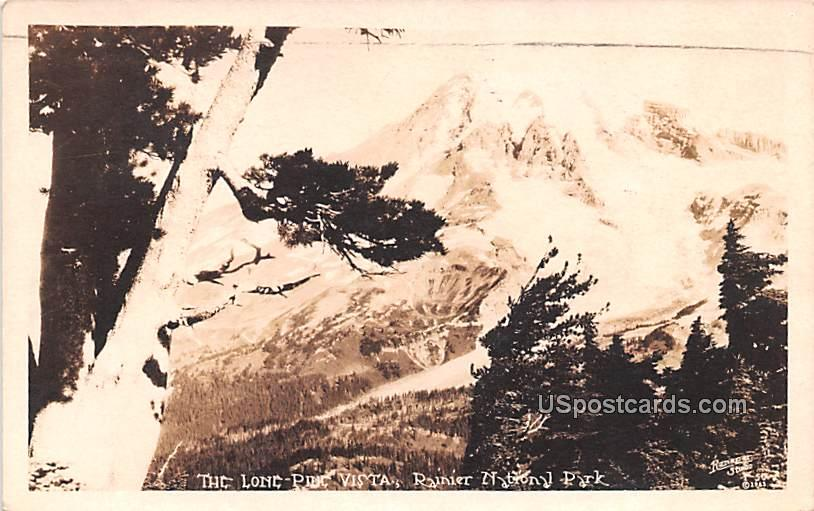 Lone Pine Vista - Rainier National Park, Washington WA Postcard