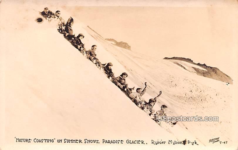 Nature Coasting on Summer Snows - Rainier National Park, Washington WA Postcard