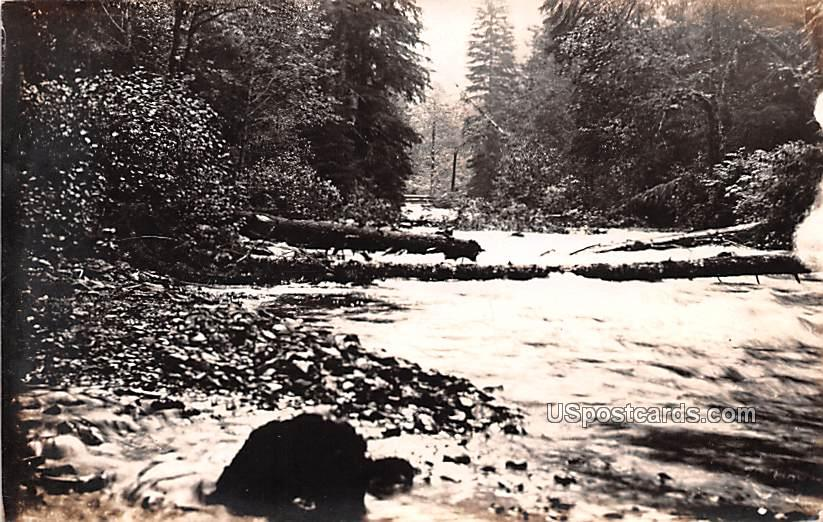 Crossing Stream - Starleys, Washington WA Postcard
