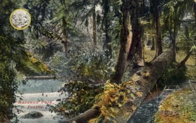 Ravenna Park - Seattle, Washington WA Postcard