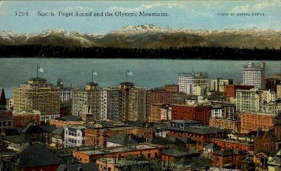 Puget Sound & Olympic Mountains - Seattle, Washington WA Postcard