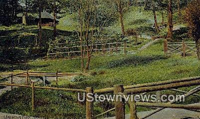 Madrona Park - Seattle, Washington WA Postcard