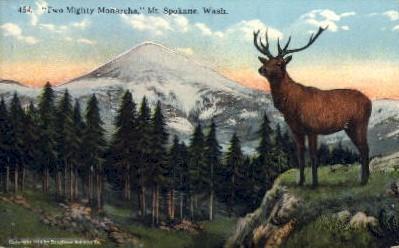 Two Mighty Monarchs - Spokane, Washington WA Postcard