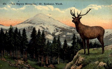 Two Mighty Monarchs - Spokane, Washington WA Postcard