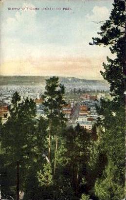 Spokane Through Pines - Washington WA Postcard
