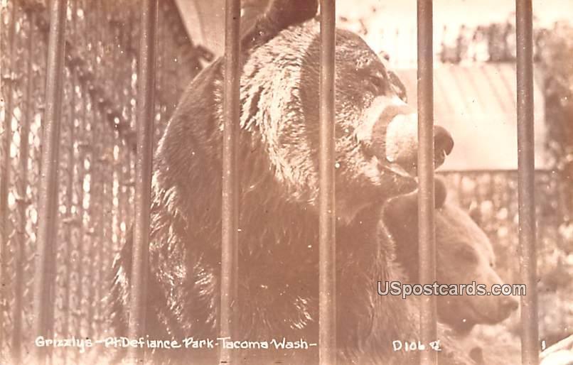 Grizzlys - Tacoma, Washington WA Postcard