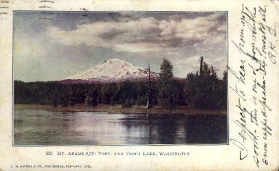 Mt. Adams - Trout Lake, Washington WA Postcard