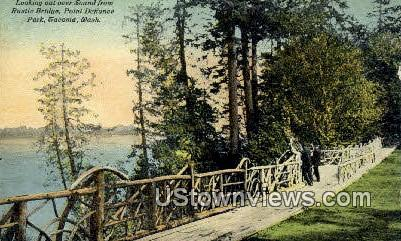 Rusitc Bridge, Point Defiance Park - Tacoma, Washington WA Postcard