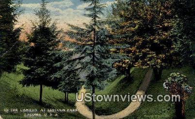 Canyon, Lincoln Park - Tacoma, Washington WA Postcard