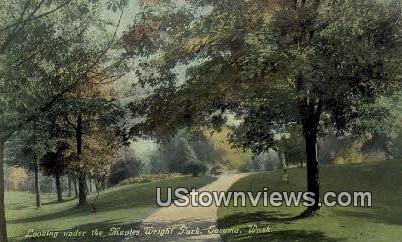 Maples, Wright Park - Tacoma, Washington WA Postcard