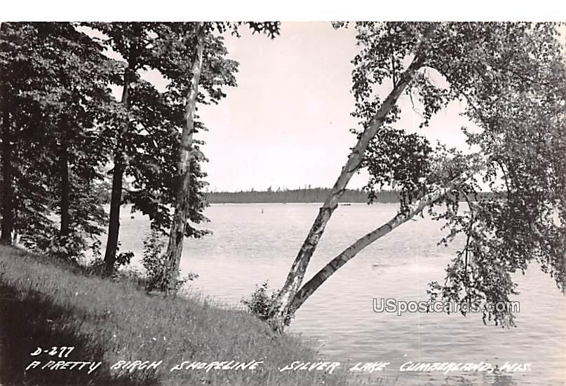 Pretty Birch shoreline - Cumberland, Wisconsin WI Postcard