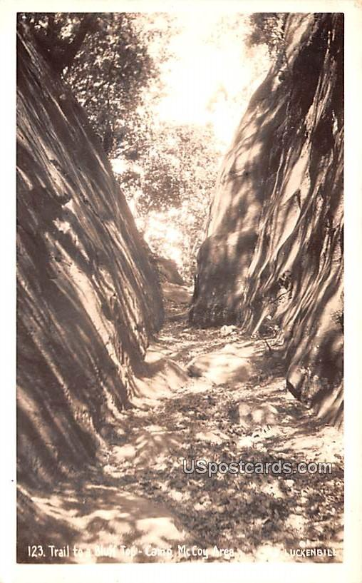 Trail to a Bluff Top - Camp McCoy, Wisconsin WI Postcard