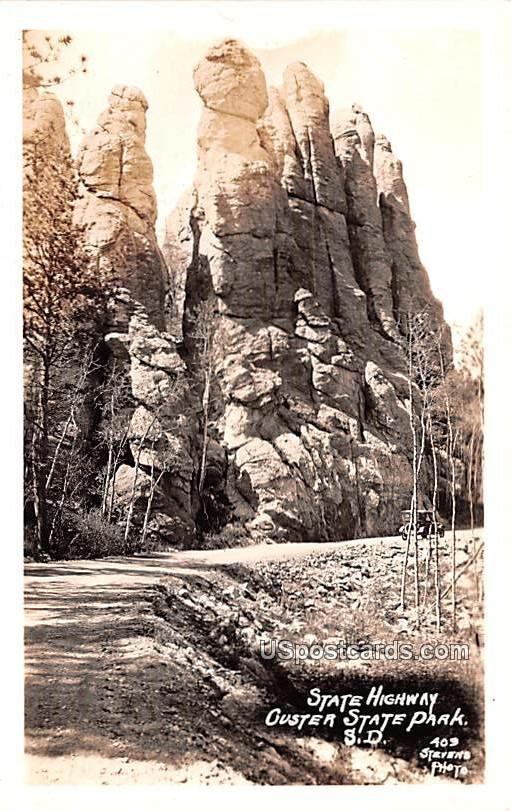 State Highway - Custer State Park, Wisconsin WI Postcard