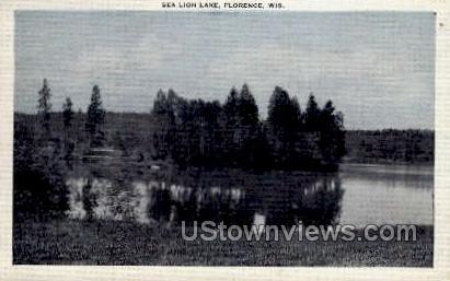 Sea Lion Lake - Florence, Wisconsin WI Postcard