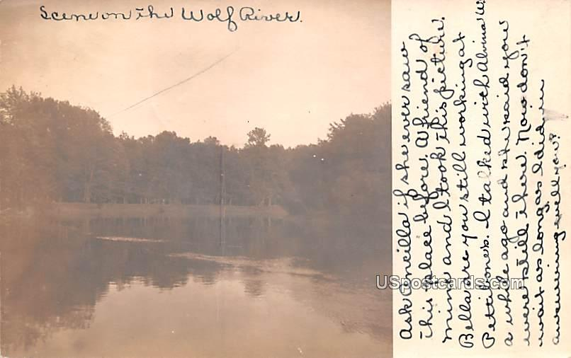 Scene on The Wolf River - Hortonville, Wisconsin WI Postcard