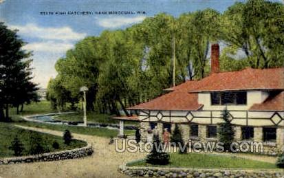 State Fish Hatchery - Minocqua, Wisconsin WI Postcard