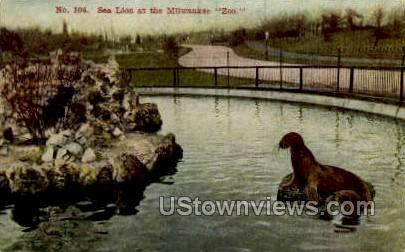 Sea Lion At The Zoo - MIlwaukee, Wisconsin WI Postcard