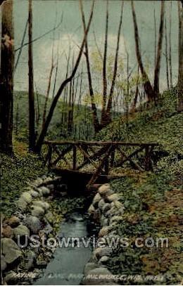 Ravine at Lake Park - MIlwaukee, Wisconsin WI Postcard
