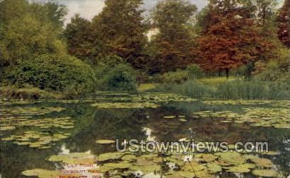Lily Pond In Humboldt Park - MIlwaukee, Wisconsin WI Postcard