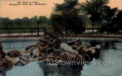 Sea Lions At Play - MIlwaukee, Wisconsin WI Postcard