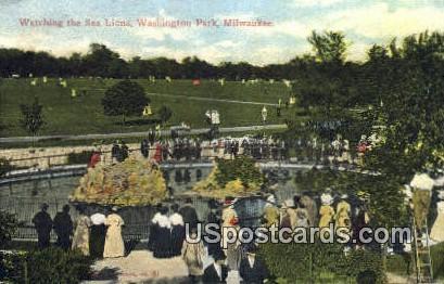 Sea Lions, Washington Park - MIlwaukee, Wisconsin WI Postcard