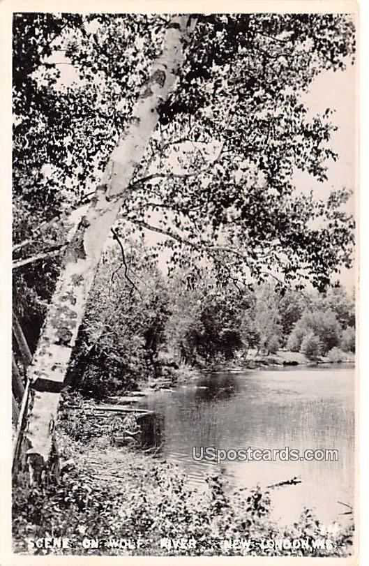 Scene on Wolf River - New London, Wisconsin WI Postcard