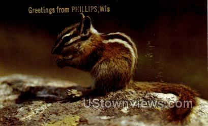 Greetings From - Phillips, Wisconsin WI Postcard