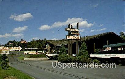 Wisconsin Duck Dock - Misc Postcard