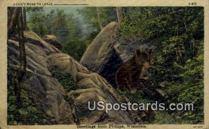 Bear - Phillips, Wisconsin WI Postcard