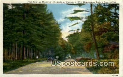 Pine Row - Shawano, Wisconsin WI Postcard