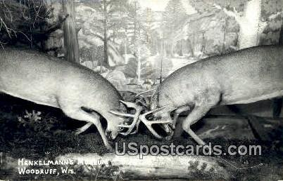 Henkelmann's Museum - Woodruff, Wisconsin WI Postcard