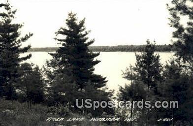 Viola Lake - Webster, Wisconsin WI Postcard
