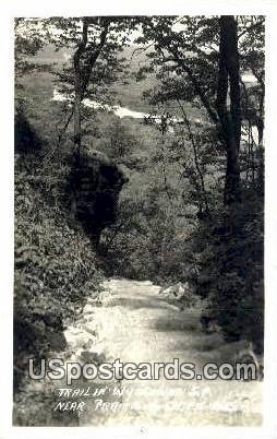 Trail, Wyalusing SP - Prairie Du Chien, Wisconsin WI Postcard