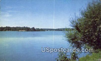 Weeping Willows - Misc, Wisconsin WI Postcard