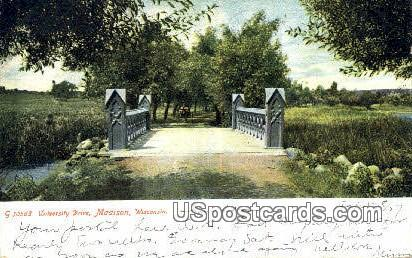 University Drive - Madison, Wisconsin WI Postcard