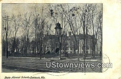 State Normal School - Oshkosh, Wisconsin WI Postcard