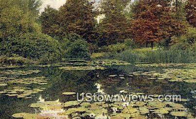 Lily Pond, Humboldt Park - MIlwaukee, Wisconsin WI Postcard