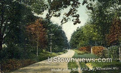 Wooded Drive, White Fish Bay - MIlwaukee, Wisconsin WI Postcard