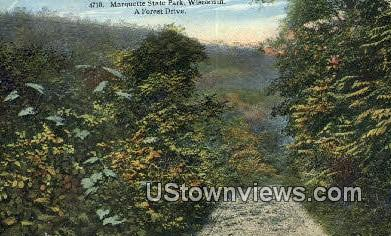 Forest Drive - Marquette State Park, Wisconsin WI Postcard