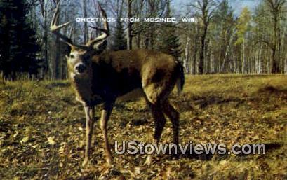 Mosinee, Wisconsin,     ;     Mosinee, WI Postcard