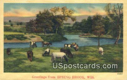 Spring Brook, Wisconsin Postcard      ;      Spring Brook, WI