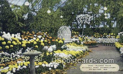 Mum Flower, Mitchell Park Conservatory - MIlwaukee, Wisconsin WI Postcard