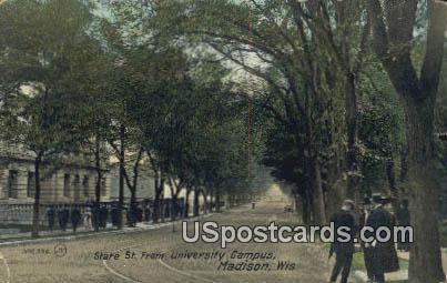 University Campus - Madison, Wisconsin WI Postcard