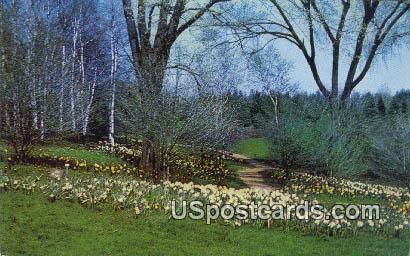 Alfred L Boerner Botanical Gardens - Hales Corners, Wisconsin WI Postcard